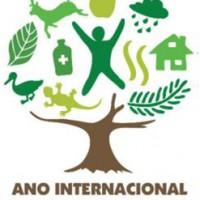 Ano-Internacional-das-Florestas