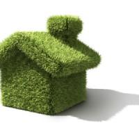 grass-house[1]
