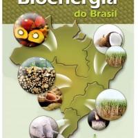 Bioenergia/biomassa
