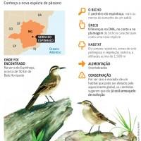Folha S.Paulo