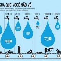 agua VIRTUAL
