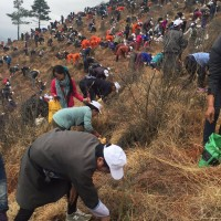 Fresh News Daily - Bhutan