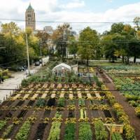 Detroit-Urban-Agrihood