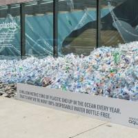 Plastic Bottles - Tree Hugger