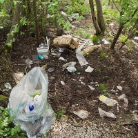Estonia_waste in forests